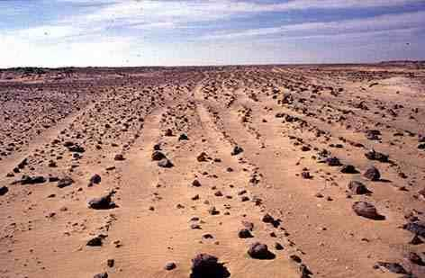 birtawil_desert.jpg